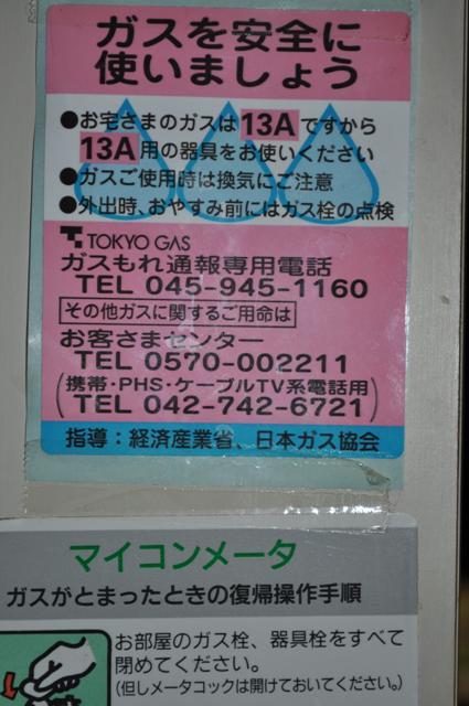 2011_0312_225132dsc_1037