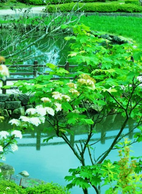 2011_0513_140611dsc_2486