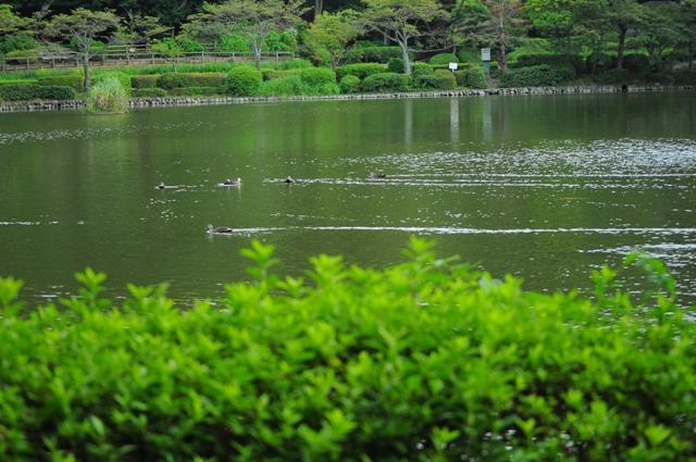 2011_0908_171741dsc_7559_2