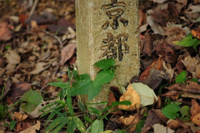 2011_1028_154143dsc_0163_2